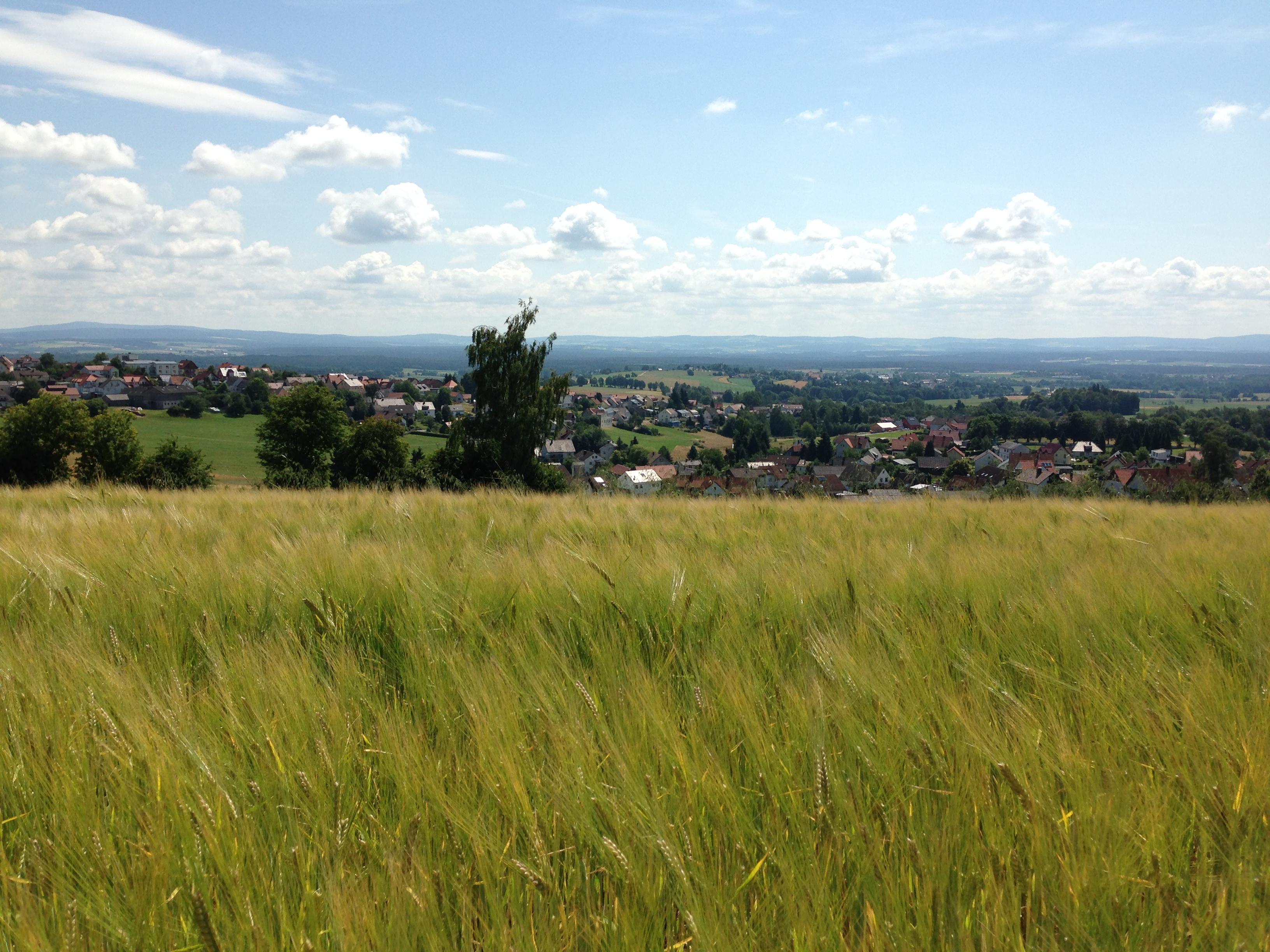 Steinwaldradweg Blick von Fuchsmühl nach Wiesau