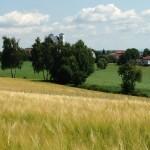 Steinwaldradweg Fuchsmühl