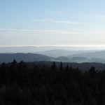 Blick vom Rabenberg in den Oberpfälzer Wald