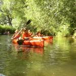 Flusswandern auf der Wondreb