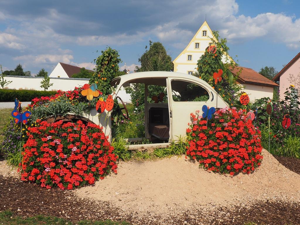 Blumenkäfer im Fischhofpark