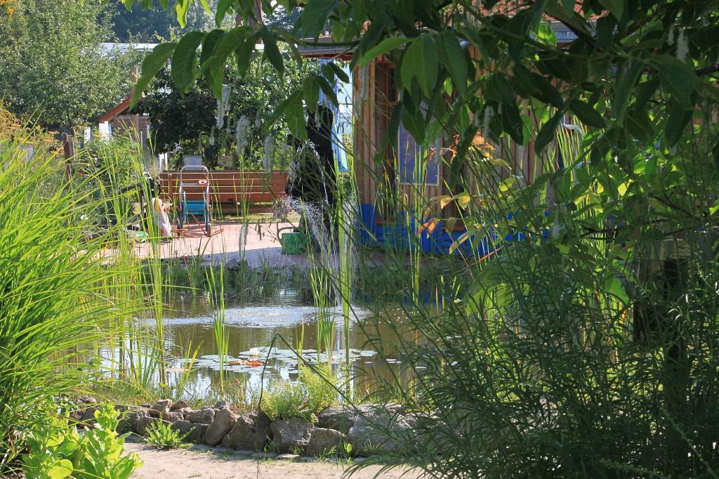 Sommer, Sonne, Blüttenzeit im NEG KUBZ Umweltstaion Waldsassen (51)