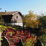 Herbstsonne im Freilandmuseum Neusath - Perschen