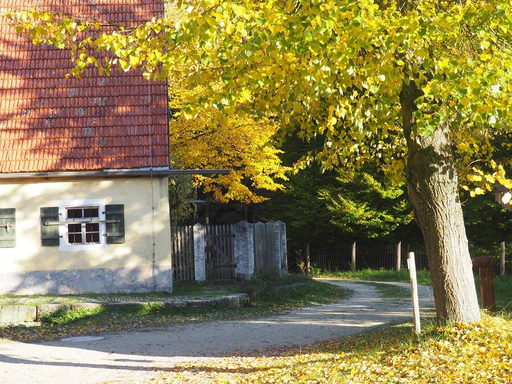 Goldener Herbst in der Oberpfalz