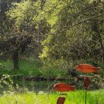 Kurpark Moosbach