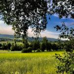 Sommertag im Oberpfälzer Wald
